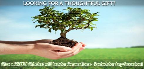 www.treegivers.com